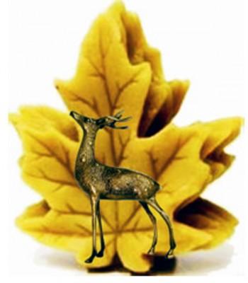 Παντζαίοι - λογότυπο - logo